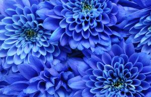 blu proprietà e significato