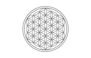 Significato e simbologia Fiore della Vita