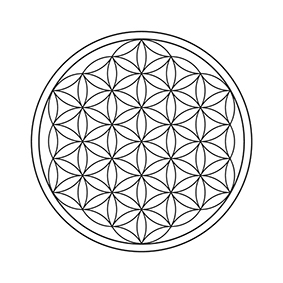 Significato e simbologia Fiore della Vita P