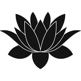 Significato e simbologia Fiore di Loto P
